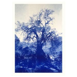 Art Print Tree